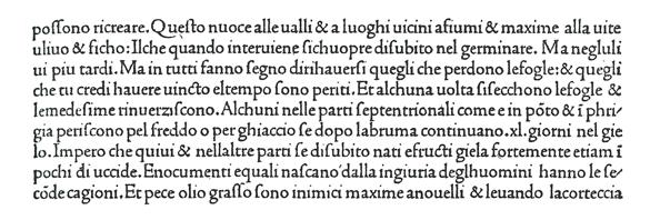 Nicolas Jensonによる『プリニウス博物誌(複写)』